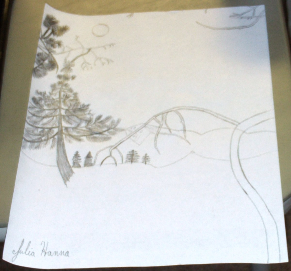 Here I am adding more details to the drawing of my tree.