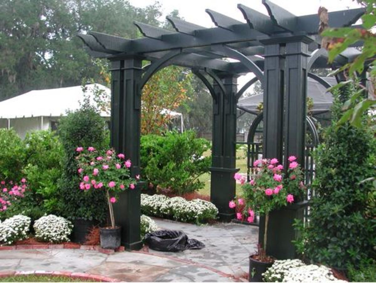 Pergola Painted In Classic Black