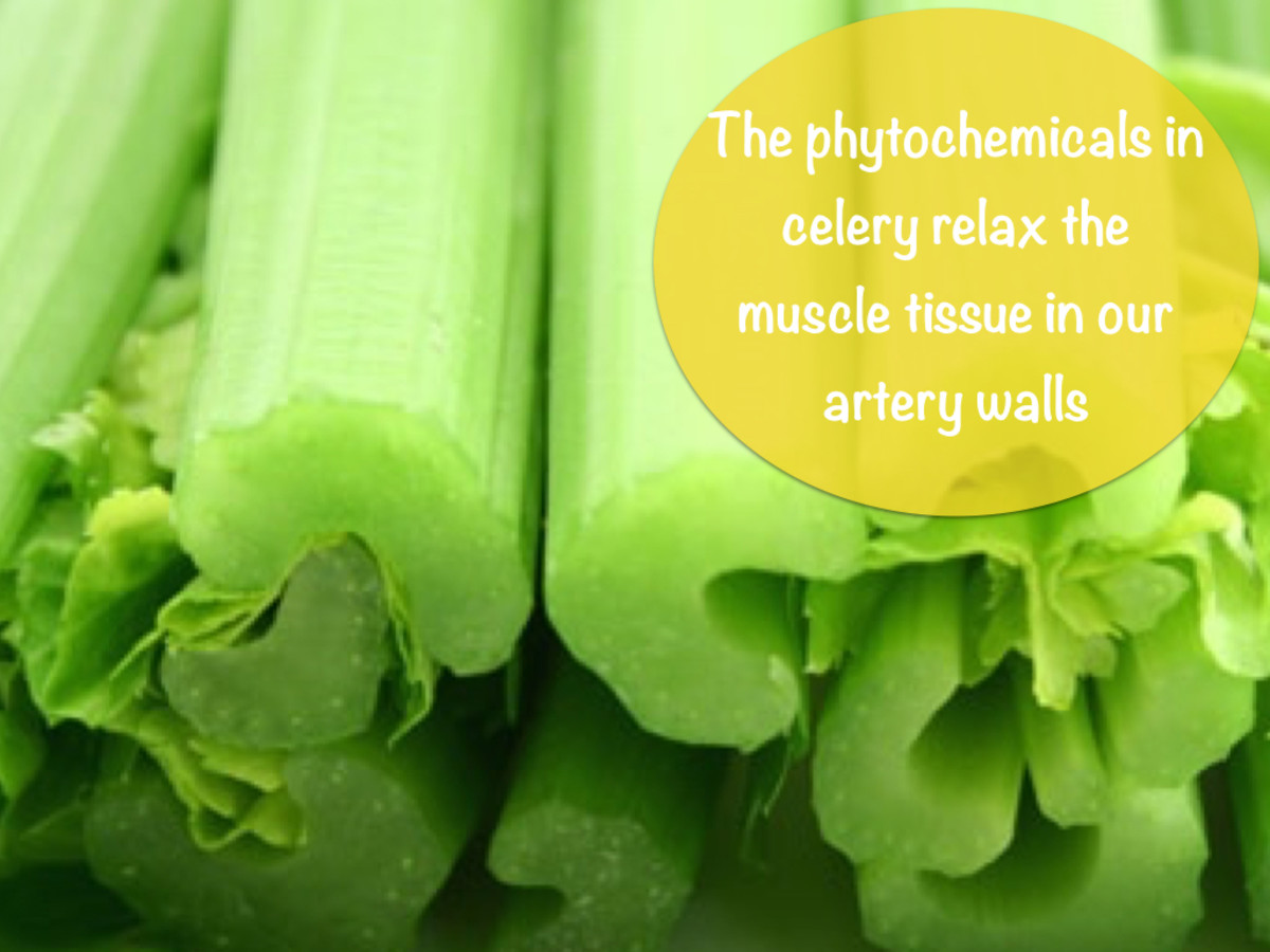 The phytochemicals in celery promote increased blood flow and a lowering of blood pressure.