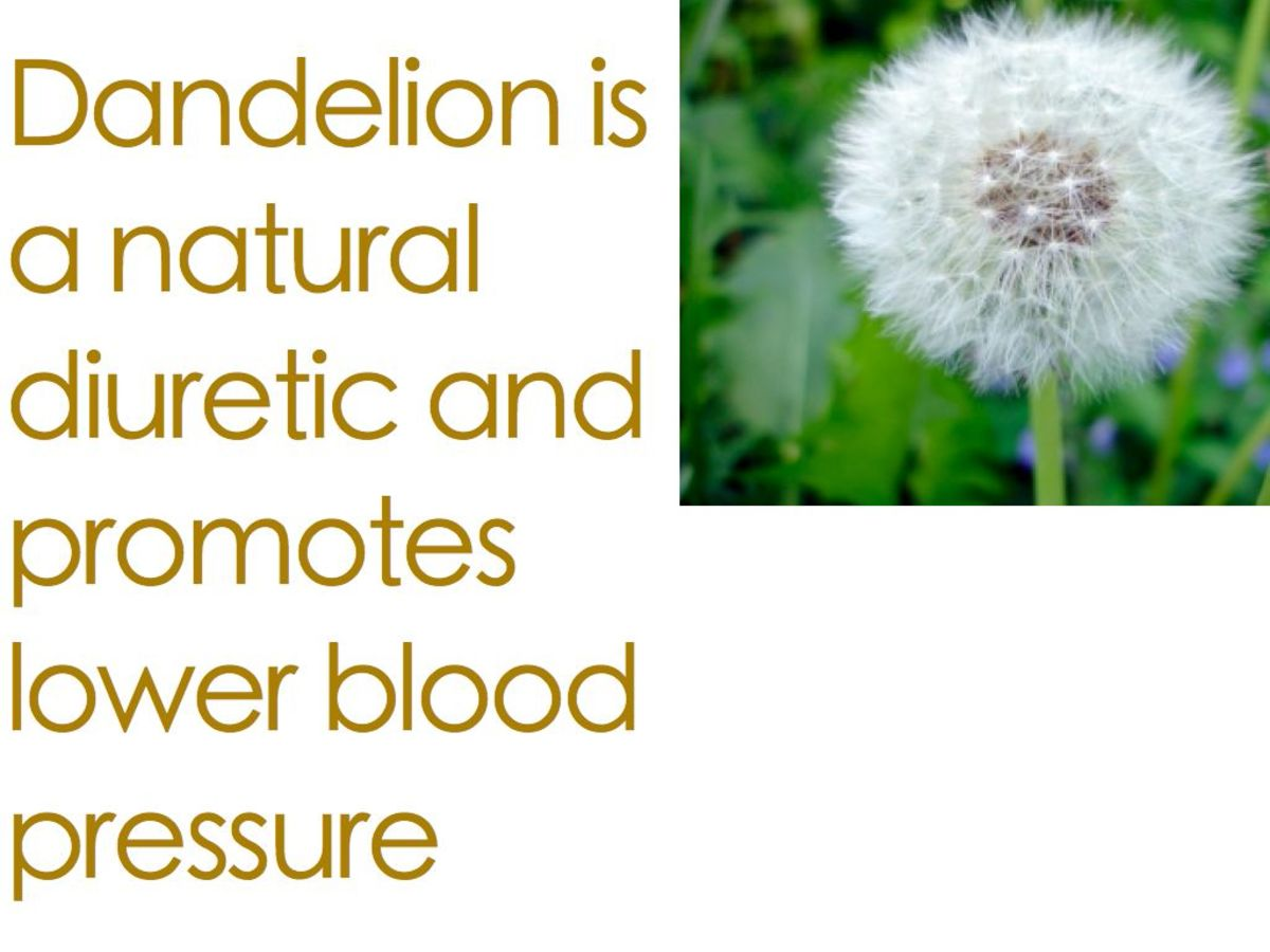 Dandelion greens help reduce high blood pressure.