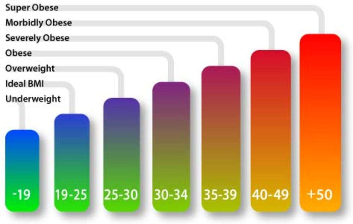 Colorful BMI Chart of Weight Categories