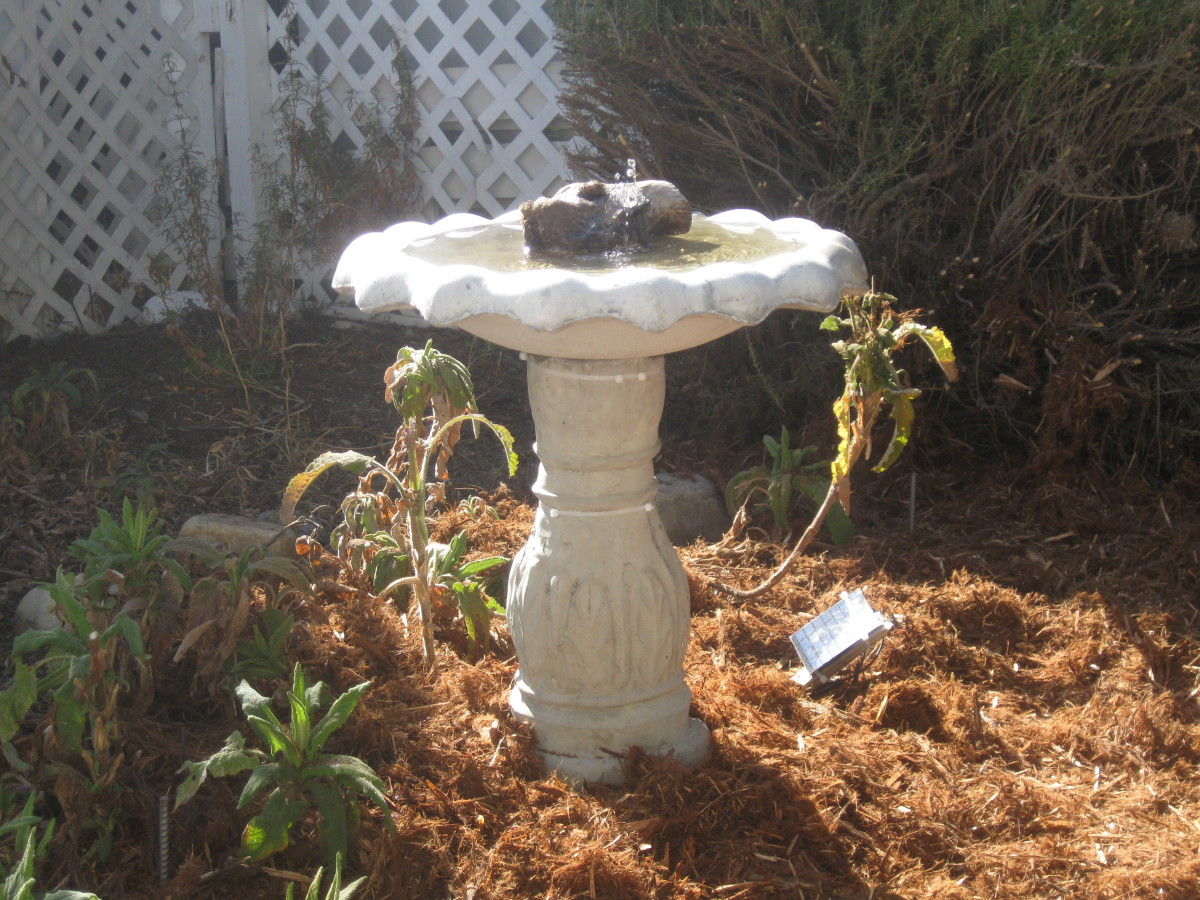 Here we see the project at completion. It is a fully adjustable and level concrete birdbath. Adding a branch will offer something for the birds to perch on.