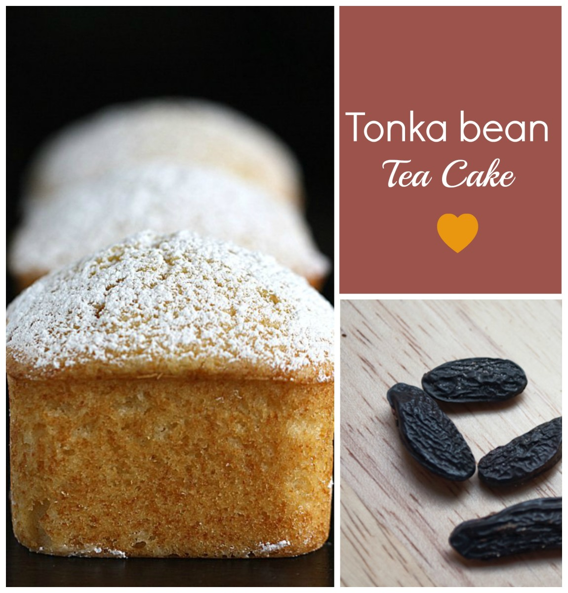 The Tonka bean is used as flavouring in the culinary world for puddings, smoothies, cakes and other desserts. Featured here is a Tonka bean Tea Cake. Image edited by healthmunsta.