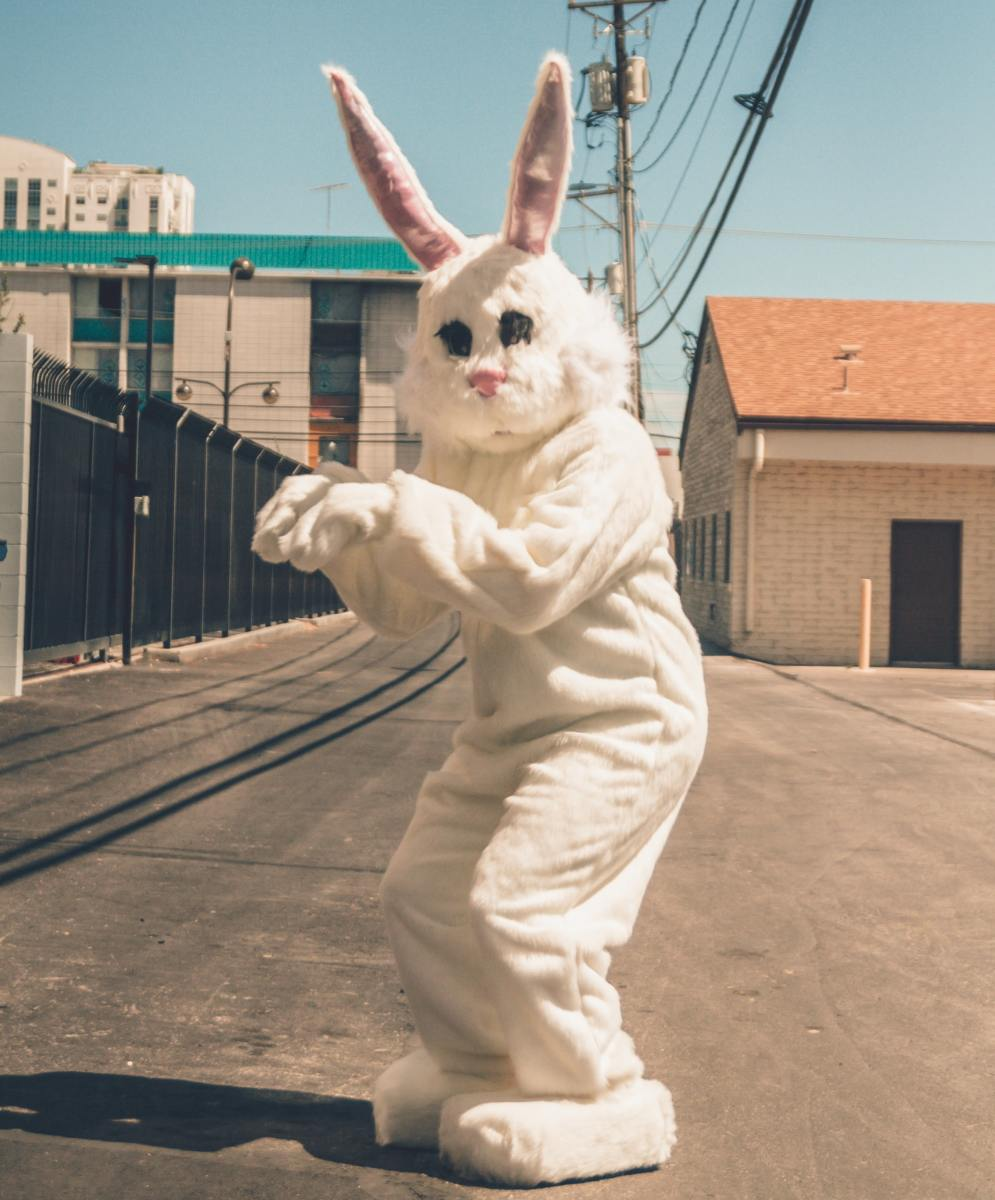 A person dressed in a complete bunny costume.