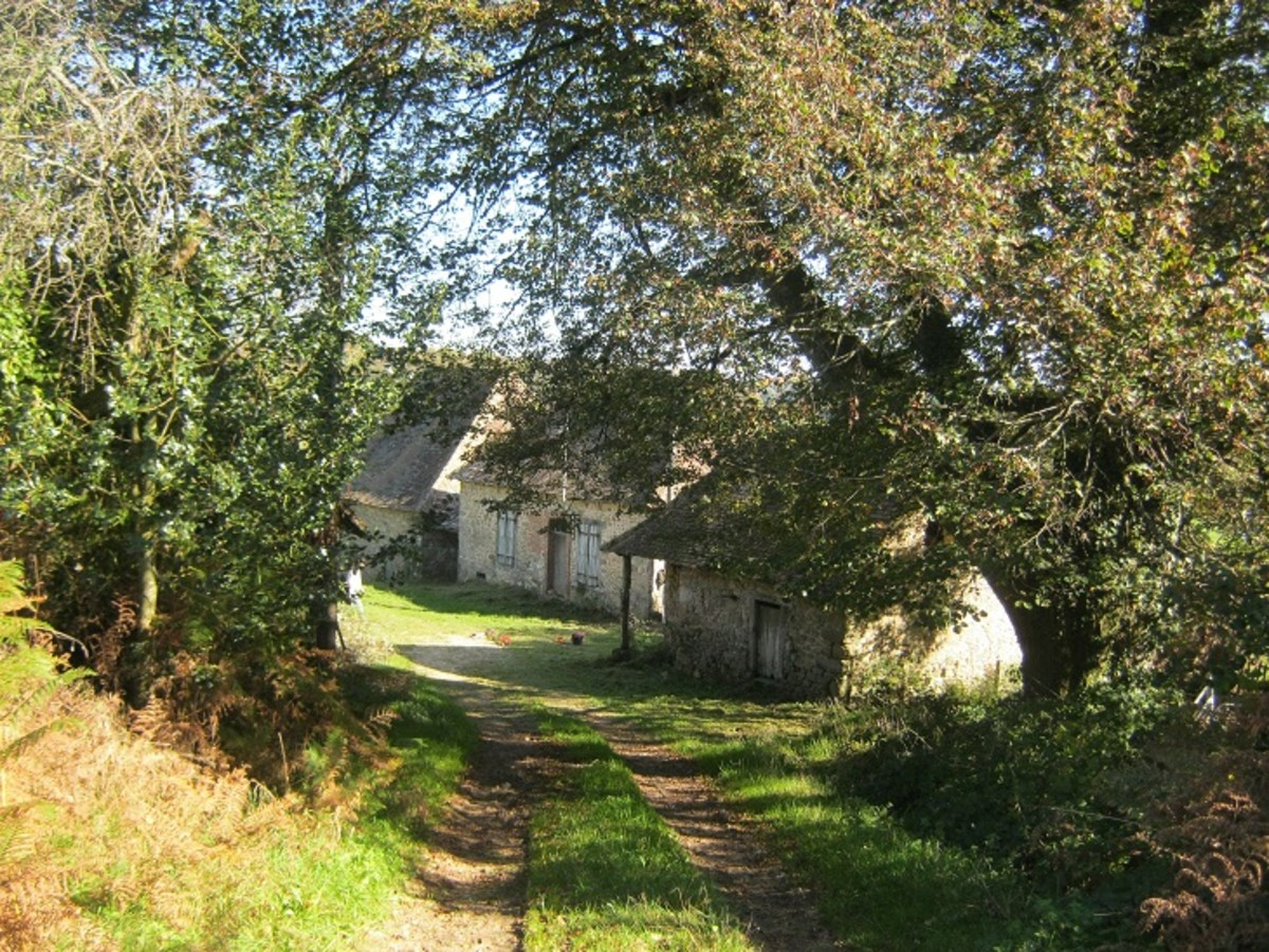 Farmhouse, barns and almost a hectare of land on the market for 145,000 euros.