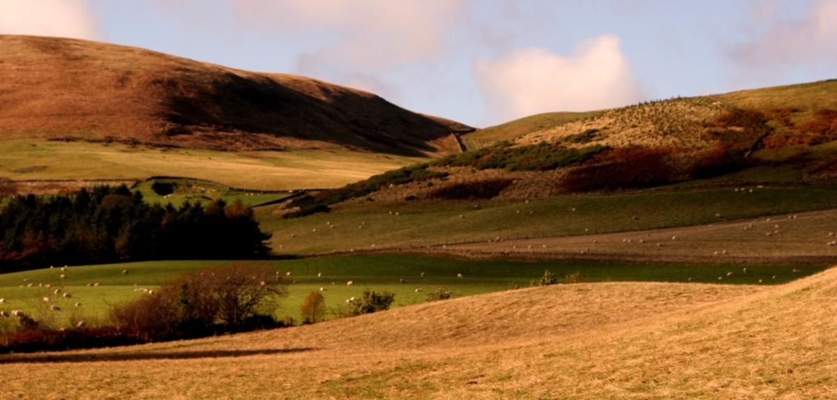 move-to-scotland