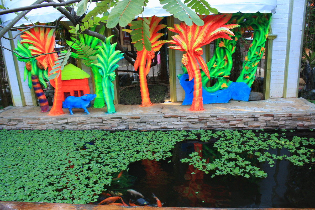 The fish pond.