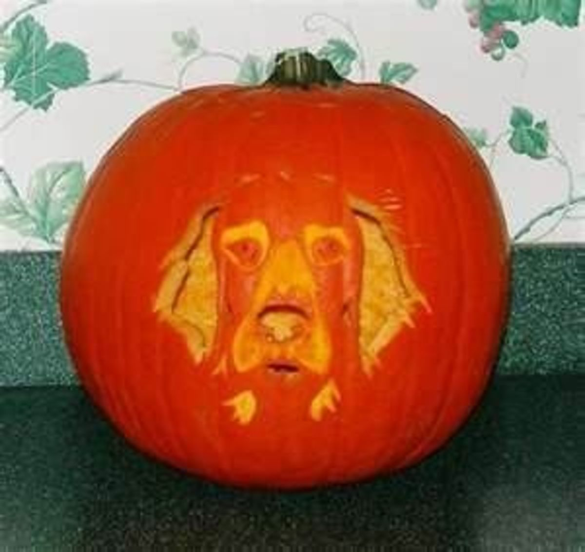 Dog portrait jack-o-lanterns are very popular. Photo from welcomepup.