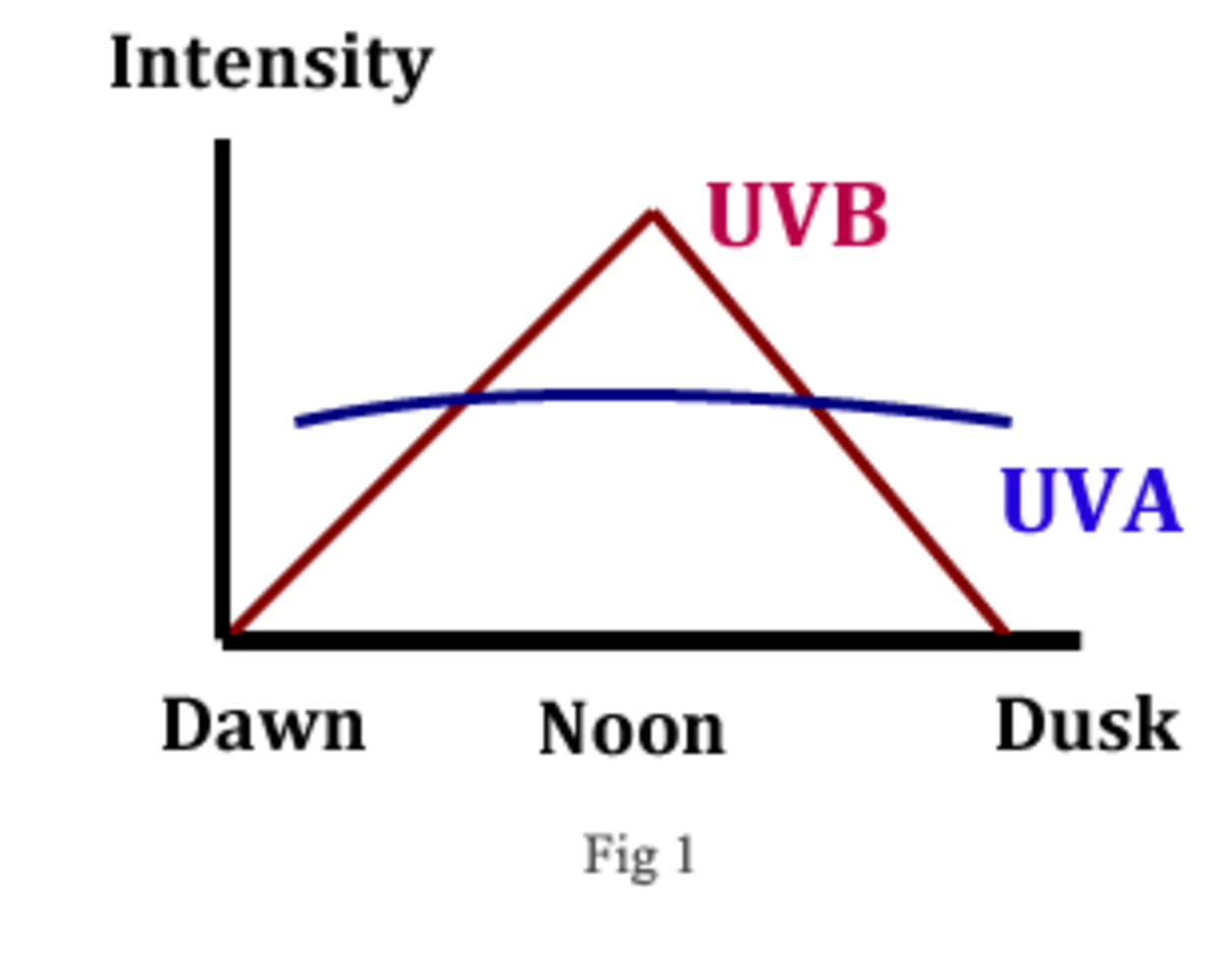 Chart showing UV-a and UV-B light from the sun.