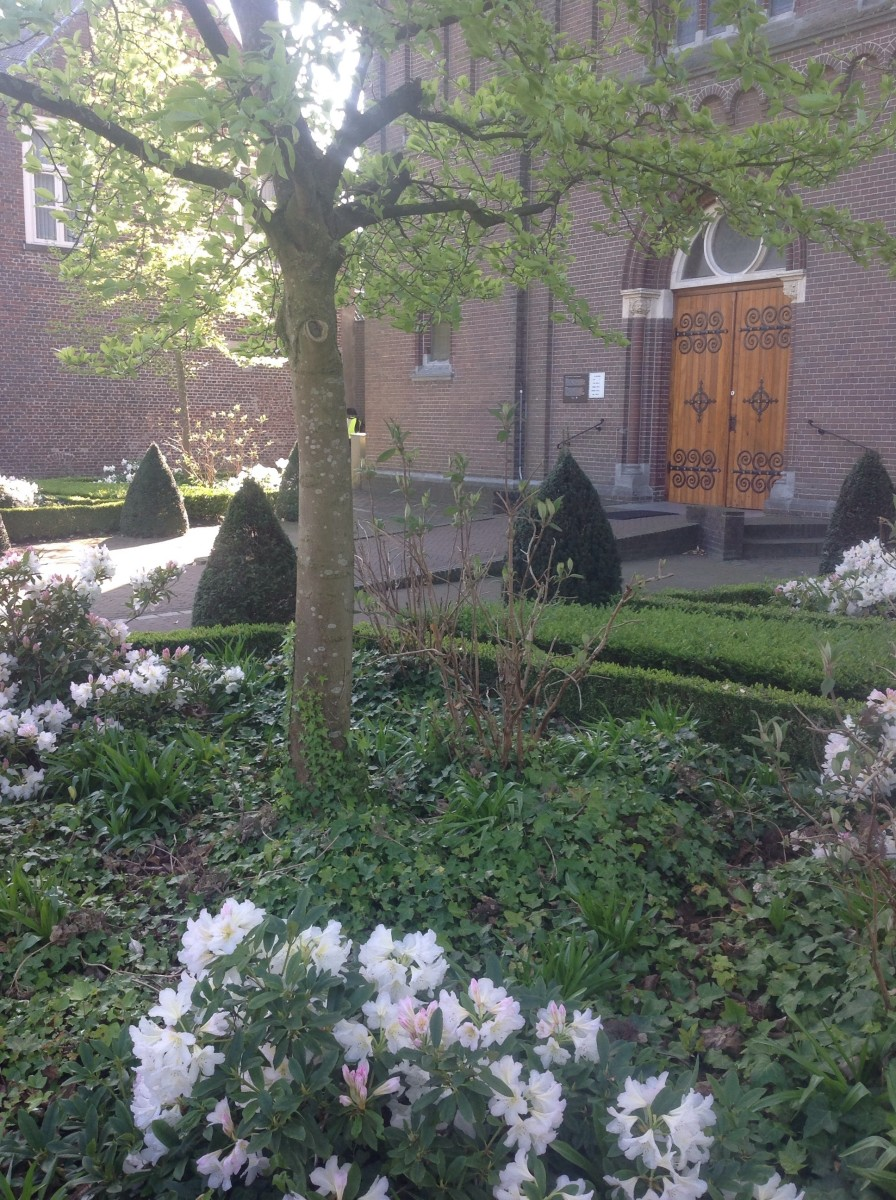 Church: Small Dutch Country Village