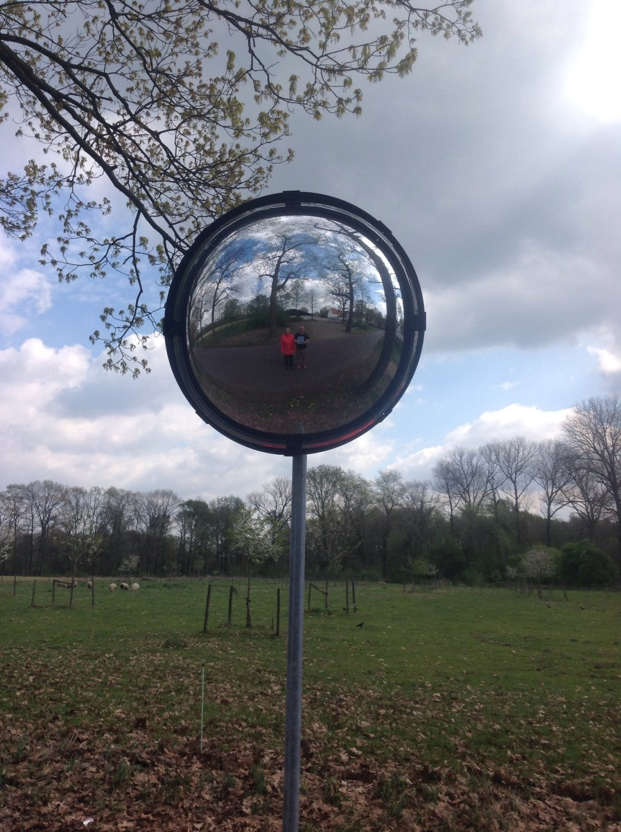 Sculpture / Mirror