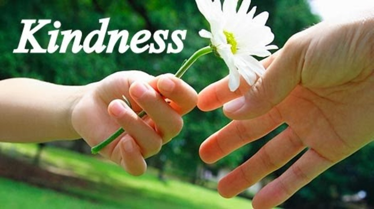 What the Bible Says About Kindness