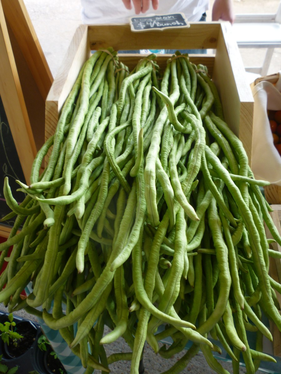 Long beans from Morning Mist Harvest at the Farmer's Market at Imperial Sugar Land