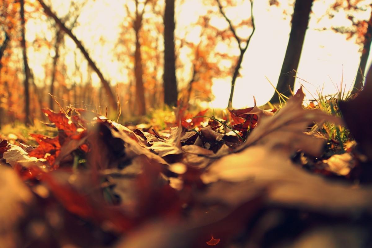 30-november-instagram-photo-ideas