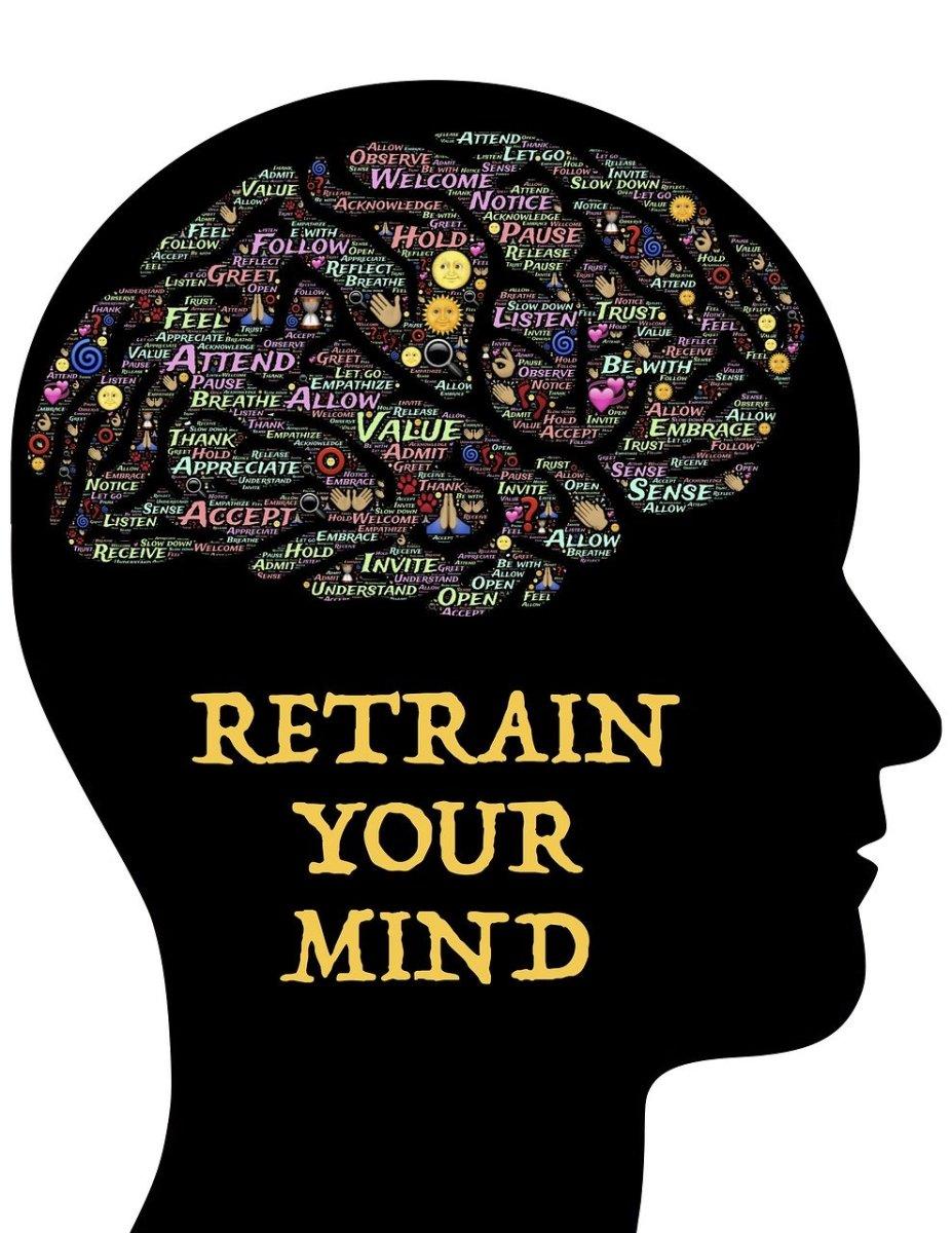 the-fascinating-brain