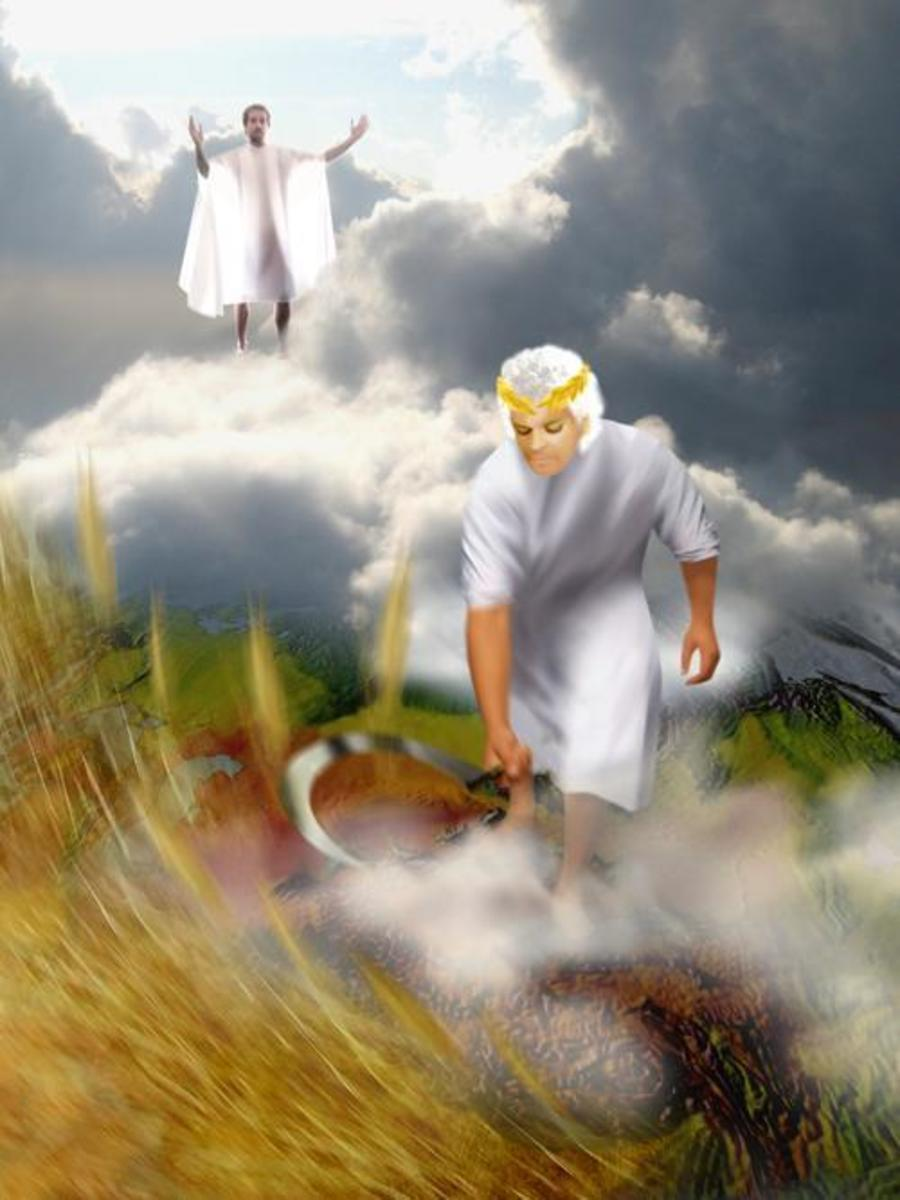reaping-and-sowing-how-the-harvest-works-in-gods-kingdom