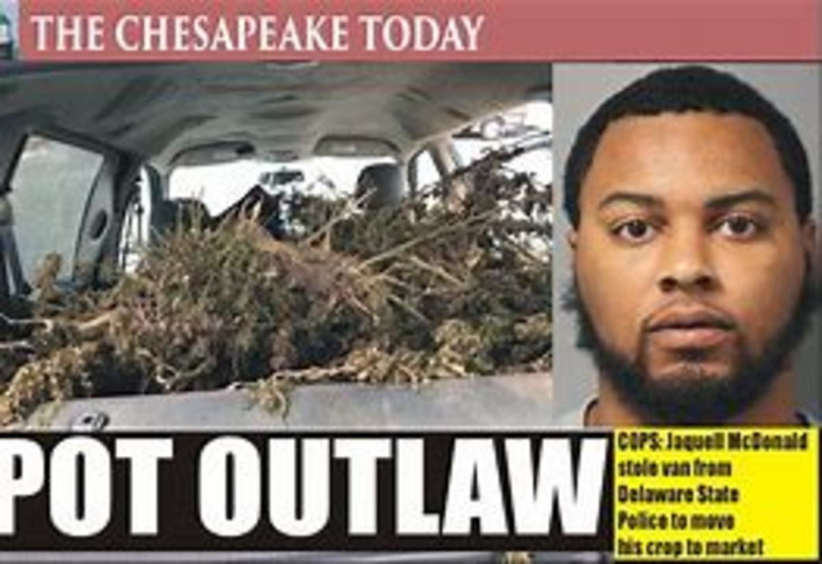 The Marijuana Outlaw of Delaware
