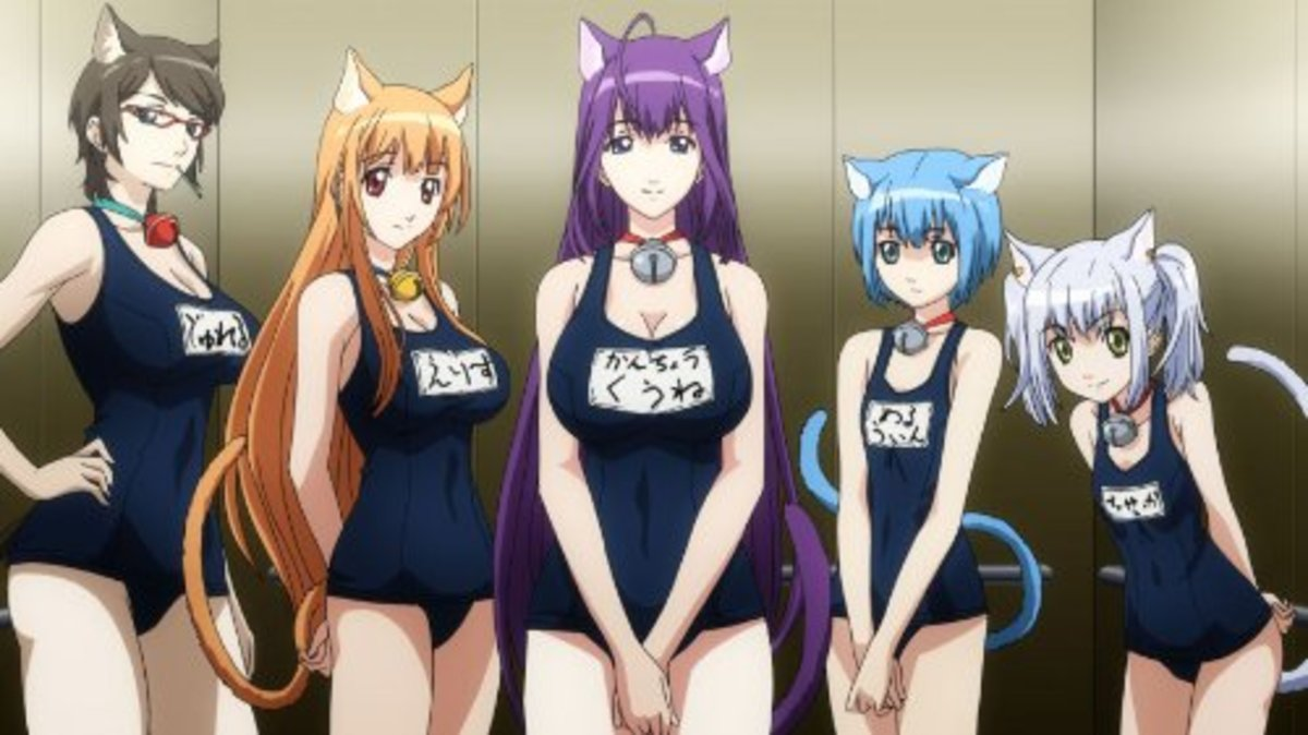 Asobi ni Iku yo! (Cat Planet Cuties)
