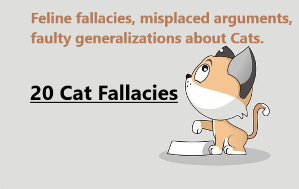 common-cat-fallacies