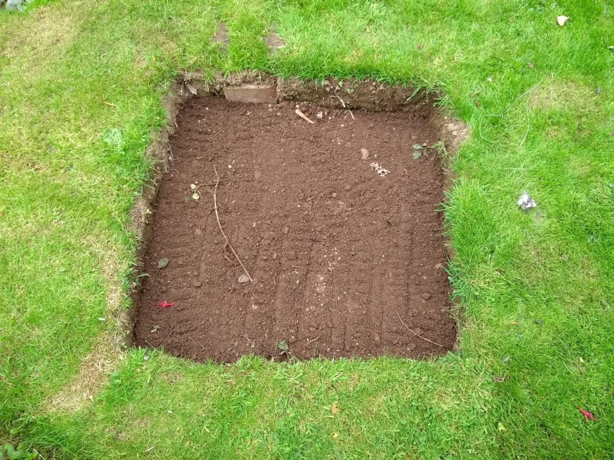 Add a layer of top soil.