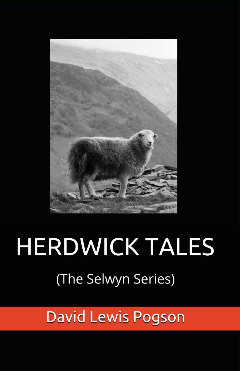 Google 'Amazon Books' and type 'Herdwick Tales' into the search bar.