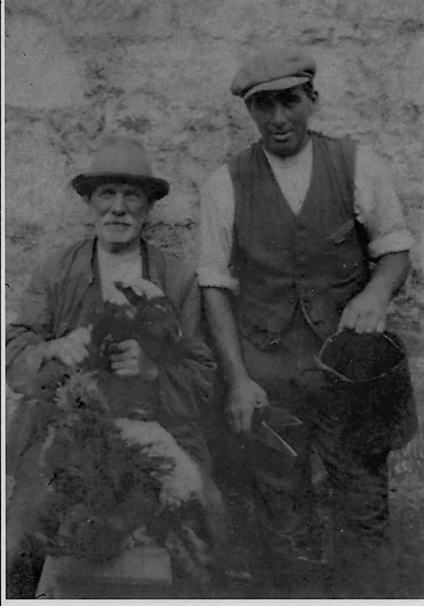 Walter Winster, the notorious northern dialect poet, holding a Herdwick sheep on his lap whilst it is clipped.