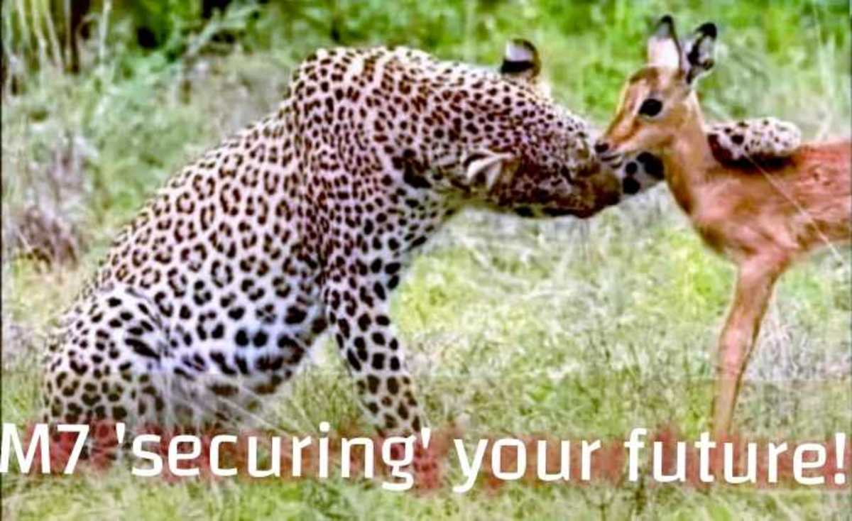 """Museveni's 2021 Campaign Slogan """"securing Your Future"""", a Mockery to Ugandans"""