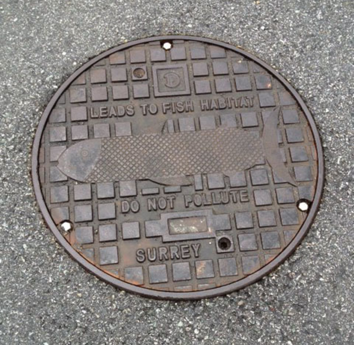 Did you know that almost every town or city has a different design on the manhole covers that's unique to them. This is from Surrey, BC where I actually have lived for a couple of years.