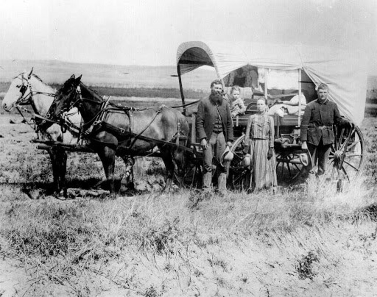 The image of the pioneer has been a staple of American society and the image that most of the world had of the country up until the 20th century.