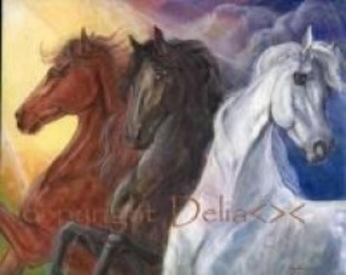 Glory of Horses