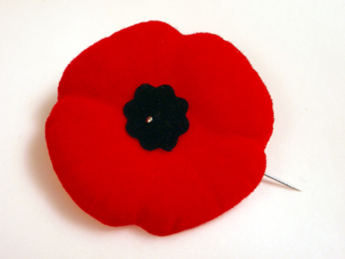 what-signifies-poppy-on-remembrance-day
