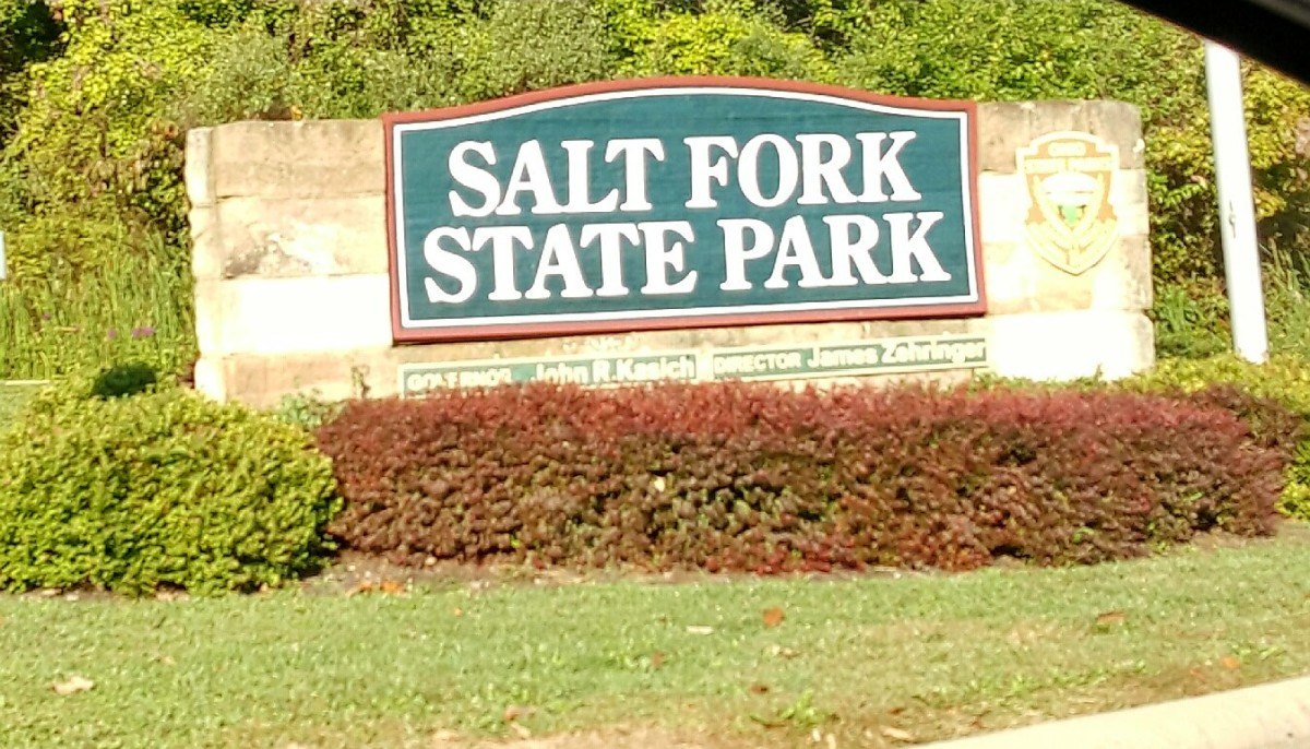 Welcome to Salt Fork State Park.