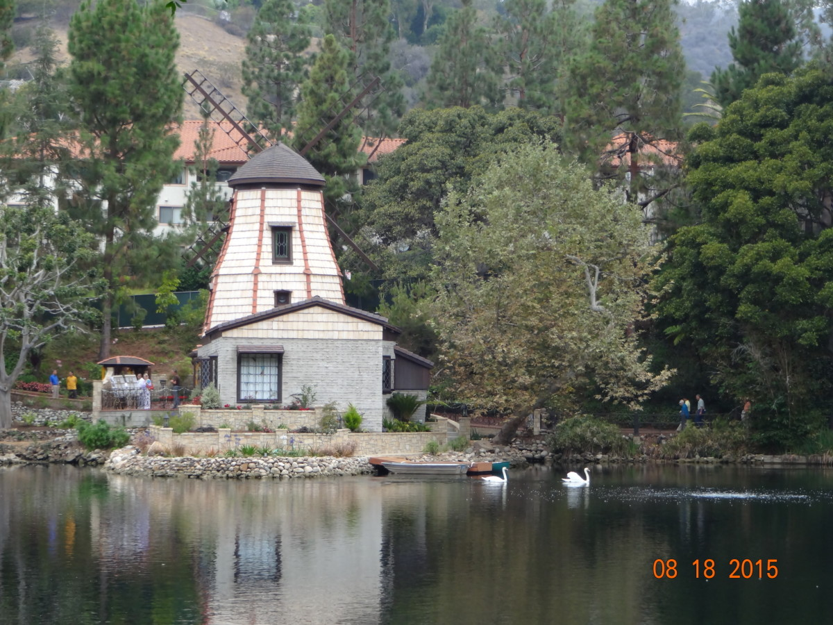 My favorite place to meditate on the SRF grounds at Lake Shrine