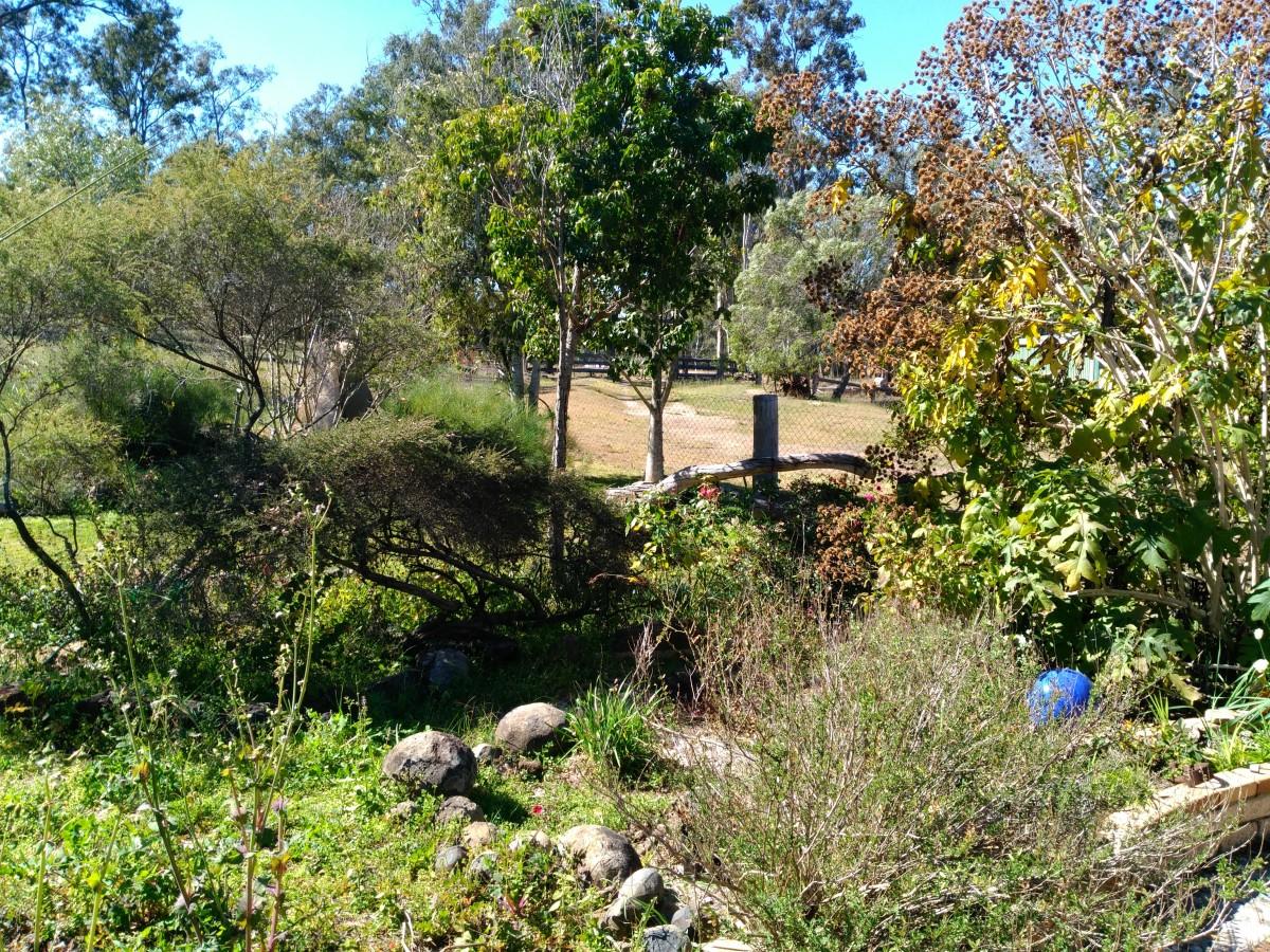Natural Gardens at Protea Park
