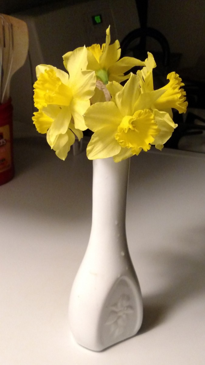 Little things can help to brighten nearly any day!