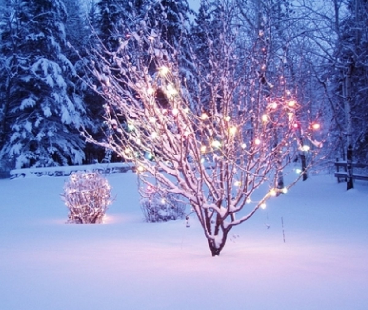 christmas-sayings-and-quotes