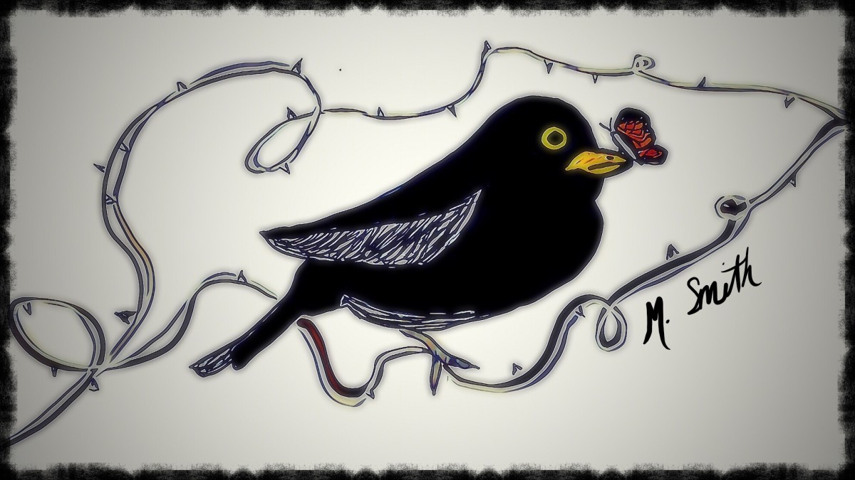 a-collaboration-of-art-and-poetry-the-blackbird-and-the-butterfly