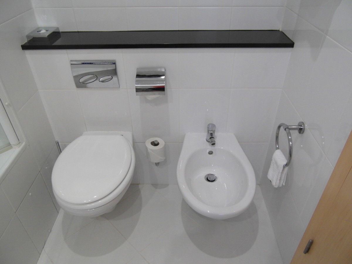 The toilet and bidet.