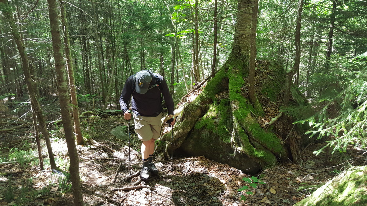 adirondack-hike-allen-mountain