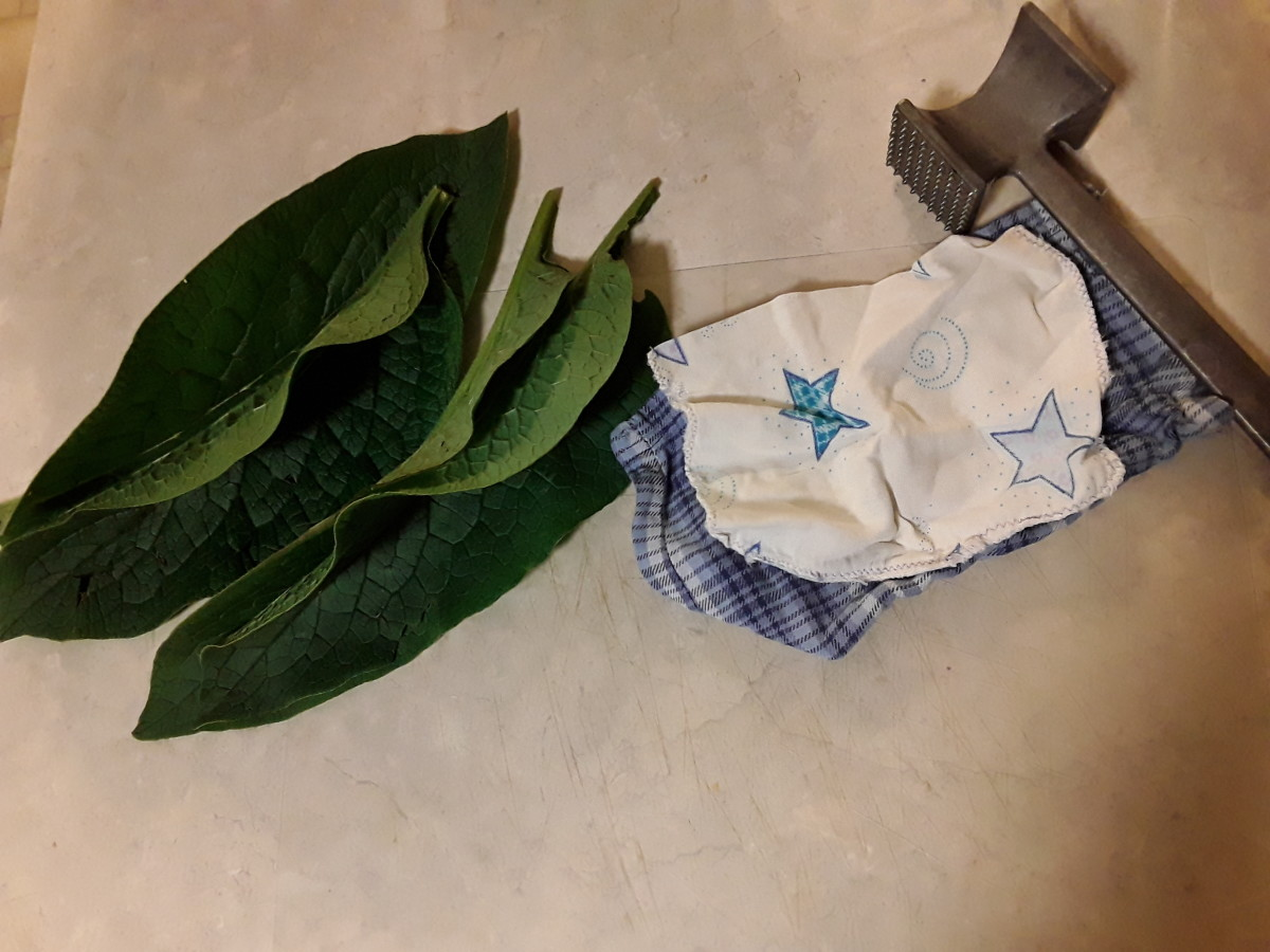 This poultice is so simple.  Just comfrey, a rag, and something to hold it on.  If desired you can use a long strip for the rag and tie it on with that.  This is for a double batch.