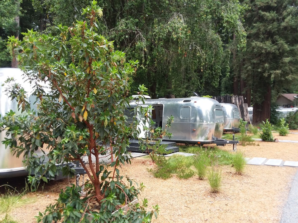 Glamping at Autocamp, on the Russian River Near Guerneville, California