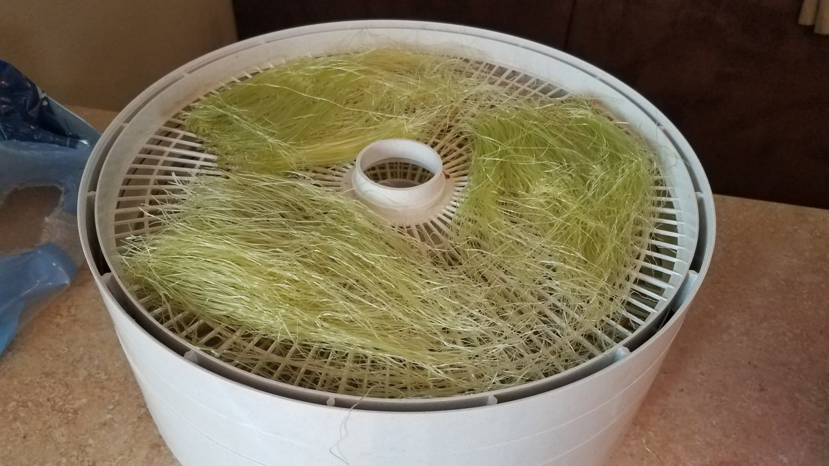 Lay out your silk on the dehydrator trays.