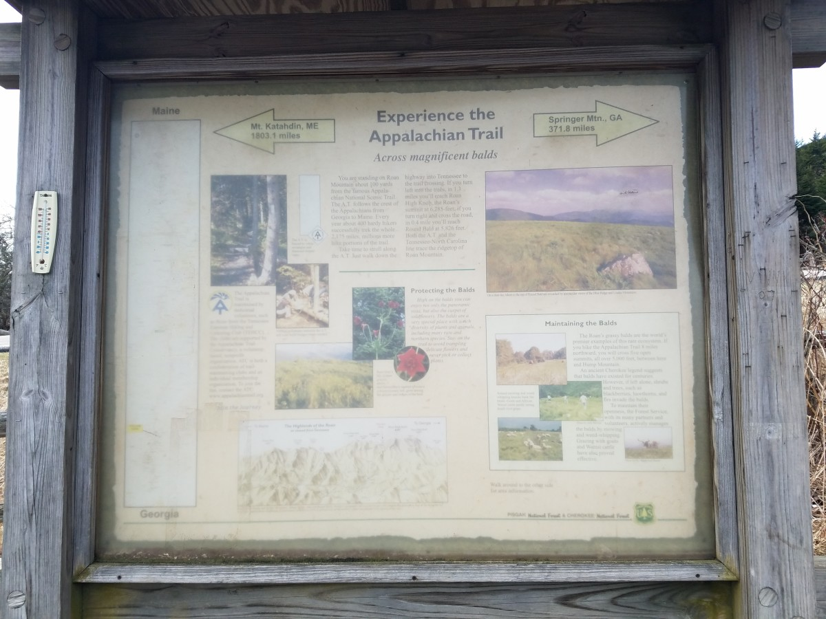 Sign at Carter Gap explaining that section of the Appalachian Trail.
