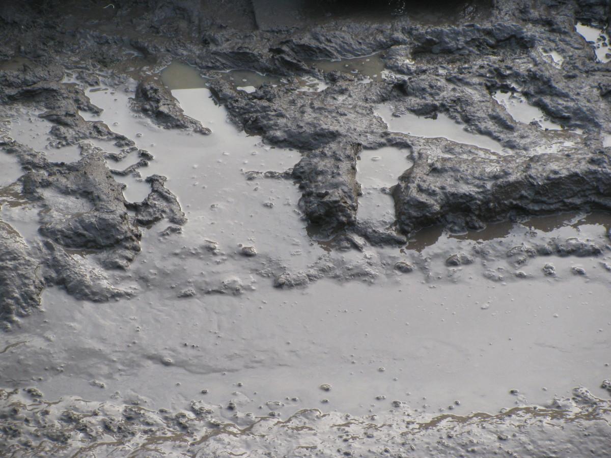 ....... to Mud