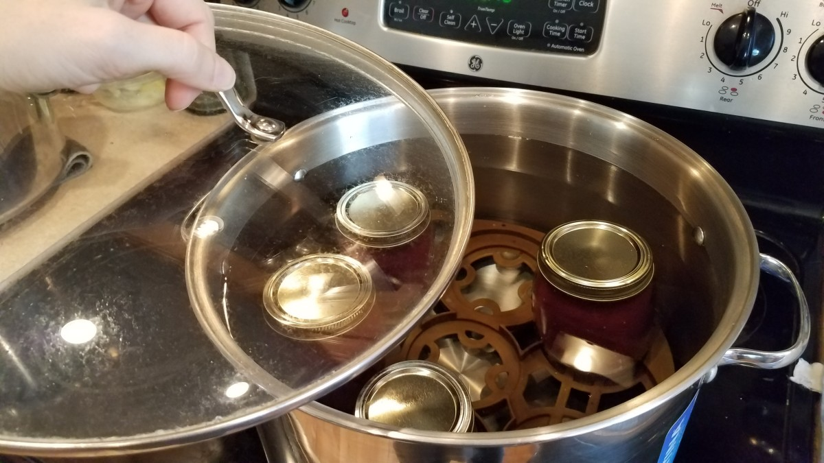 I put the top on and brought the whole thing to a rolling boil. Then I tilted the lid and set my timer for 20 minutes.