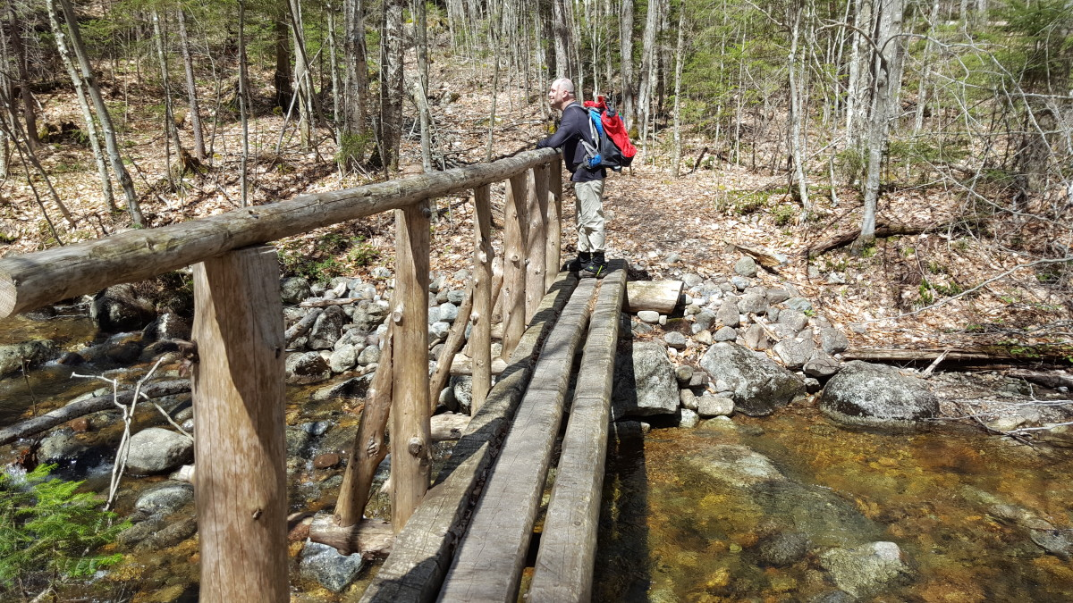 Another Stream Crossing