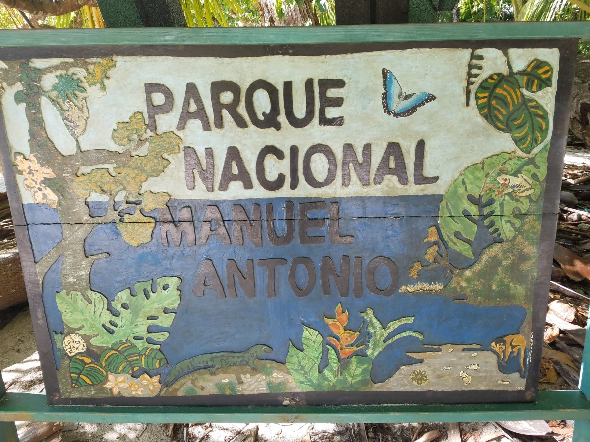 Costa Rica Adventure: Exploring Manuel Antonio