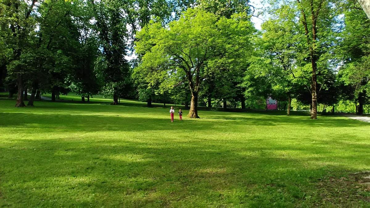 Happy Meadow
