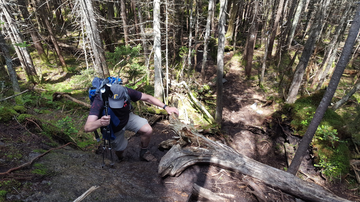 Additional Donaldson Ascent Terrain
