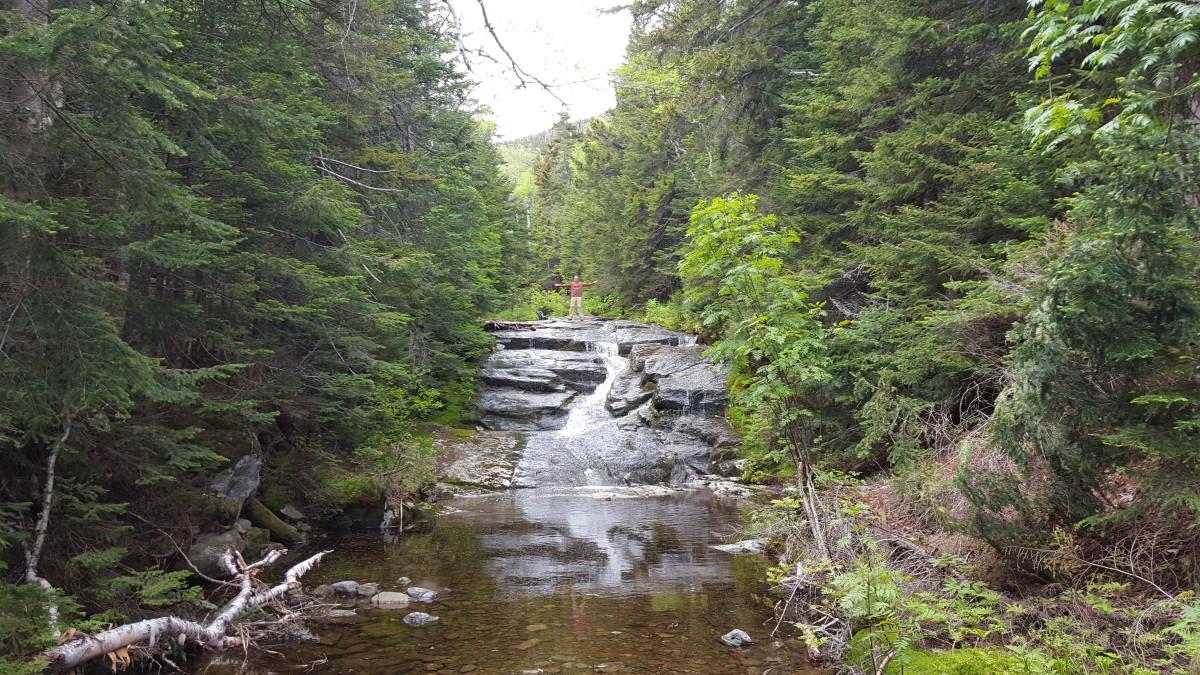 Plenty of waterfall shots available